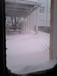 The blizzard comes to our front door