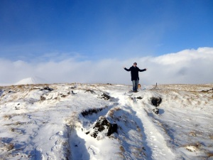 Where did the blizzard go?