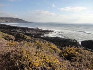 Devon scenery